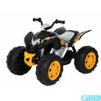 Квадроцикл Rollplay Powersport ATV 12V